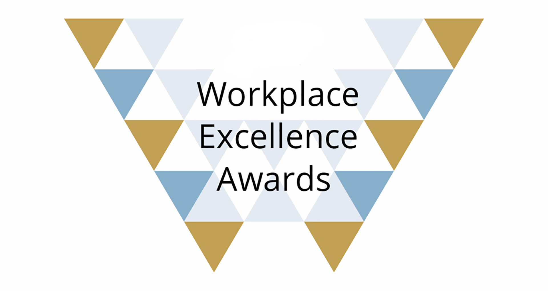 APS Workplace Excellence Awards-2